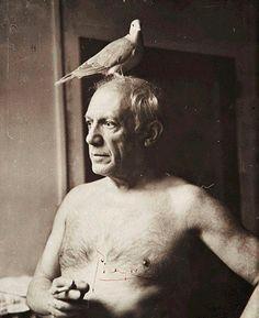 """""""Все пытаются понять живопись. Почему они не пытаются понять пение птиц?"""" Пабло #Пикассо"""