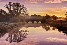 River Reflections At Sunrise / Maynooth Print by Barry O Carroll Stunning Photography, Nature Photography, Beautiful Places, Beautiful Pictures, Over The River, Nature Photos, Fine Art America, Ireland, Sunrise