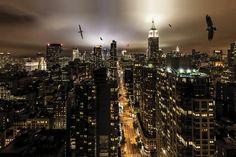 George Grubb, Wandering over Manhattan (New York City Wildlife), 2013 on Paddle8