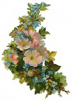 Forget-me-not and roses