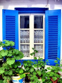 Blue Shutters, Mykonos Town, Greece  2011 / by Marny Perry