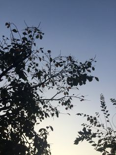 2014년 10월 15일의 하늘