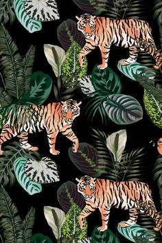 Going exotic animal tiger in the dark jungle pattern black background illustration seamless vector trendy composition beach wallpaper. Tiger Wallpaper, Beach Wallpaper, Vector Pattern, Pattern Art, Dark Jungle, Tiger Illustration, Jungle Pattern, Free Canvas, Stock Art