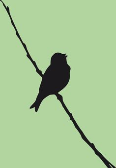 singing-bird silhouette by @yamachem, This is a silhouette of a singing bird with a green background., on @openclipart