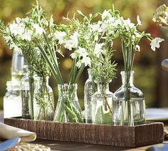 Wood Trough with Bud Vases - Pottery Barn ( Accents Classic Glass Decor) Pottery Barn, Pots, Old Bottles, Simple Flowers, White Flowers, Shabby, Bud Vases, Glass Jars, Glass Containers