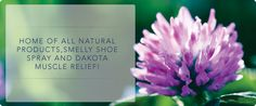 Buy stress relief kit online in North Dakota. Lashe Naturals provides help to people who deal with stress and natural health issues every day. It is an online store with different types of products like pain relief and smelly shoe spray. For more information visit : lashenaturals.com