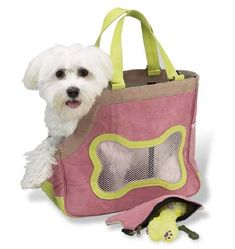 Picnic at Ascot Chelsea Dog Carrier WBone Pouch Pink * Check out the image by visiting the link.