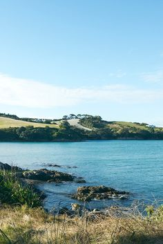 Waiheke, New Zealand.
