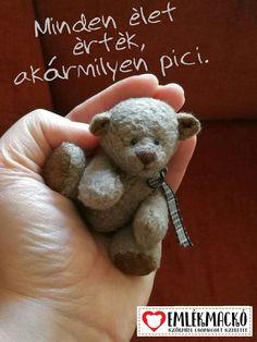 Minden élet érték, akármilyen pici. Minden, Teddy Bear, Toys, Animals, Activity Toys, Animales, Animaux, Clearance Toys, Teddy Bears