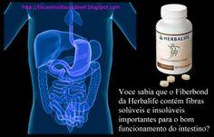 Voce sabia que o Fiberbond da #Herbalife contém fibras solúveis e insolúveis importantes para o bom funcionamento do intestino? #focoemvidasaudavel  ... Info: https://www.facebook.com/silvana.costagoncales