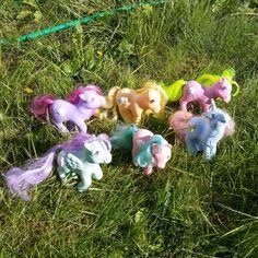 https://flic.kr/p/vbftgn | Sundae Best Ponies - Sherbet, Swirly Whirly, Crunch Berry, Peppermint Crunch, Banana Suprise & Coco Berry