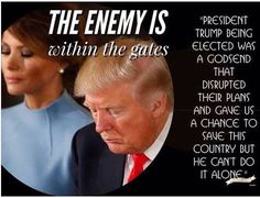 President Trump won't be able to help us forever so America better pull their heads out of their ass and wake up to the enemy within our country and government. Pro Trump, Trump Wins, Vote Trump, Donald Trump, Prison, Trump Is My President, Greatest Presidents, First Lady Melania Trump, Conservative Politics