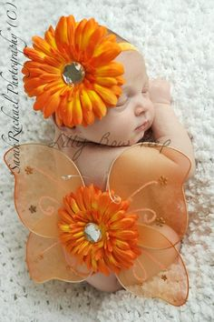 beautiful baby girl | Orange: wings & gerbera flowers. *[Sarah Rachael Photography]
