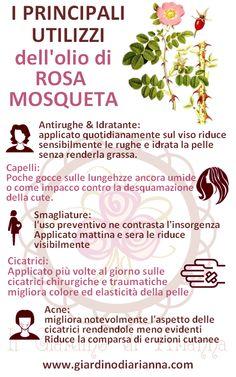 i 5 principali usi dell'olio di rosa mosqueta http://giardinodiarianna.blogspot.it/2014/09/i-principali-utilizzi-dellolio-di-rosa.html