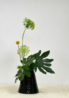 Beautiful Sogetsu Ikebana – Famous Last Words Contemporary Flower Arrangements, Tropical Floral Arrangements, White Flower Arrangements, Ikebana Flower Arrangement, Ikebana Arrangements, Flower Vases, Creative Flower Arrangements, Cactus Flower, Sogetsu Ikebana