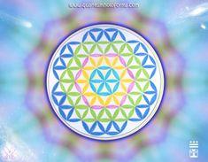OLYMPUS DIGITAL CAMERA Portal, Olympus Digital Camera, The Cure, Inspirational Quotes, Invitations, Sacred Geometry, Cute Photos, Lights, Mandalas