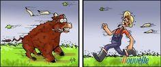 """""""Un vent à décorner les bœufs"""
