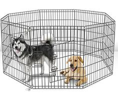 42 Tall Wire Fence Pet Dog Folding Exercise Yard 8 Panel Metal PlayPen -- To view further for this item, visit the image link.(This is an Amazon affiliate link and I receive a commission for the sales)