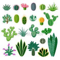 Descargar - Cactus y suculentas — Ilustración de Stock #107150318
