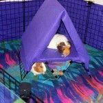 DIY Guinea Pig Loft Tent