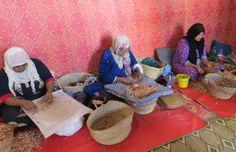 Preparing Argan nuts in Morocco