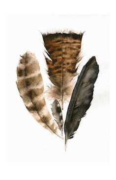Found Feathers Large Archival Print of Watercolor Painting amberalexander