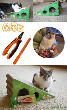 My GBGV LIfe keep your cat's claws in check with an @bestgopets cat scratcher and nail trimmer with file. The scratcher comes with catnip too! Enter our giveaway to win both of these products!