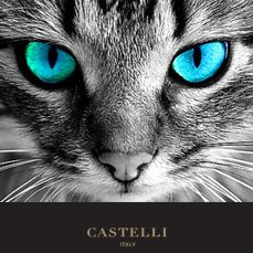 4th April - On this day: Cat's eyes first used in the road, Bradford, Yorkshire 1934   (Source: Castelli 2018 corporate diary/2018 diaries feature facts every day)