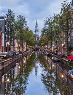 Amsterdam Beauty