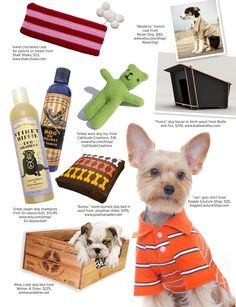 cute pet products
