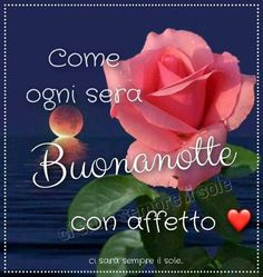 Italian Quotes, Flowers, Plants, Madonna, Mary, Kids, White Roses, Nighty Night, Photos