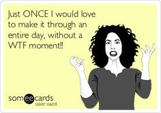 Just ONCE I would love to make it through an entire day, without a WTF moment!!