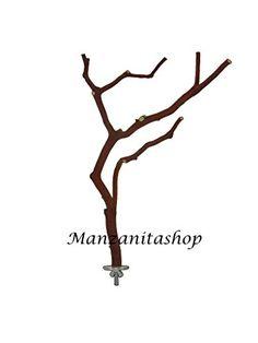 "Large Manzanita Bird Perch (11"" to 12"") Manzanitashop http://www.amazon.com/dp/B0086YCPHI/ref=cm_sw_r_pi_dp_WwU2ub1HQ3YRK"