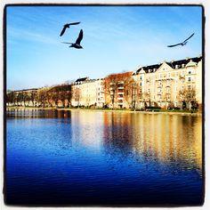 Spring has come to Copenhagen