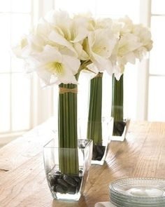 White Amaryllis. Add led light in the vase to give it a glow