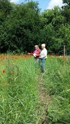 Wat een bedrijvigheid! Veel bezoekers in de tuin dankzij Westerwolde Rijgt én wandelaars van het @wandelweekend.