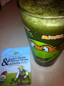 The Juice Feast Chronicles – Day 11 of 90