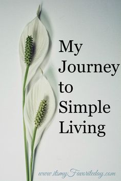 Minimalism and Simple Living have come to mean different things to different people. Great post on why she choose a simple living lifestyle. I so relate to eliminating the excess clutter to bring more purpose into your life.