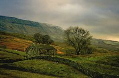 "dougstumblr:whisperingwillow:rod42:happyharry101:          ""The Yorkshire Dales"""