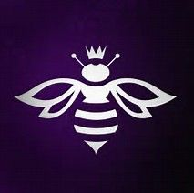 Image result for Graphic Design Honey Bee