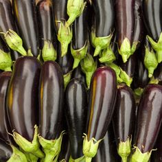 Zacusca de Vinete Mai, Eggplant, Vegetables, Healthy, Recipes, Food, Meal, Eten, Vegetable Recipes