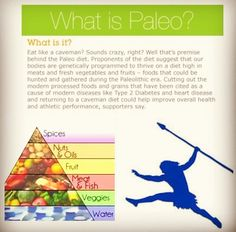 Introducing the new primal blueprint food pyramid pinterest food primal blueprinting malvernweather Image collections