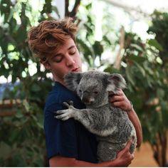 I wanna be koala 🙏