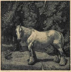 The White Horse by Lionel Lindsay, wood engraving