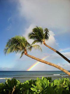 Two Palm Trees On Beach And Rainbow Over Sea Photograph  - Two Palm Trees On Beach And Rainbow Over Sea Fine Art Print