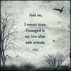 I remain alone, entangled in my love affair with solitude. Mbti, Infp, Solitude Quotes, Breathe, Describe Me, Love Affair, Loneliness, Word Porn, Beautiful Words