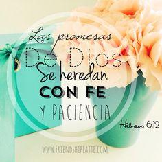 Es precisamente en el tiempo de espera donde nuestra fe es fortalecida y Dios nos prepara para recibir sus bendiciones.