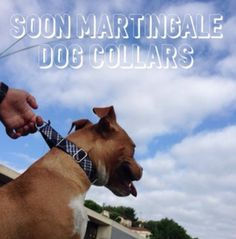 Martingale Collars SEWING URBAN DOGS