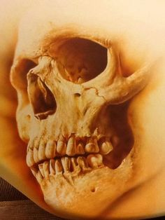 Skull - Best Airbrush Art Images, Videos and Galleries: share, rate thousand of Pictures and discover the latest uploads! - Just Airbrush Airbrush Designs, Air Brush Painting, Body Painting, Dark Fantasy Art, Dark Art, Crane, Airbrush Skull, Flame Art, Pinstriping
