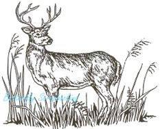 Standing Deer Buck In Tall Grass, Wood Mounted Rubber Stamp NORTHWOODS - M600